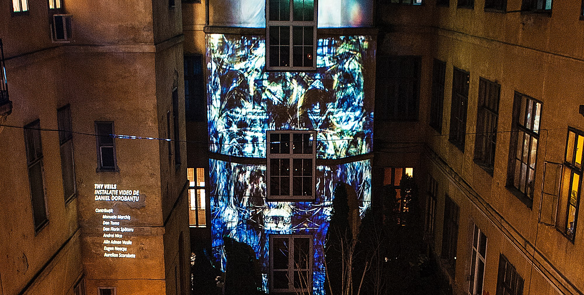 Thy Veils - video installation - Grădina de Iarnă
